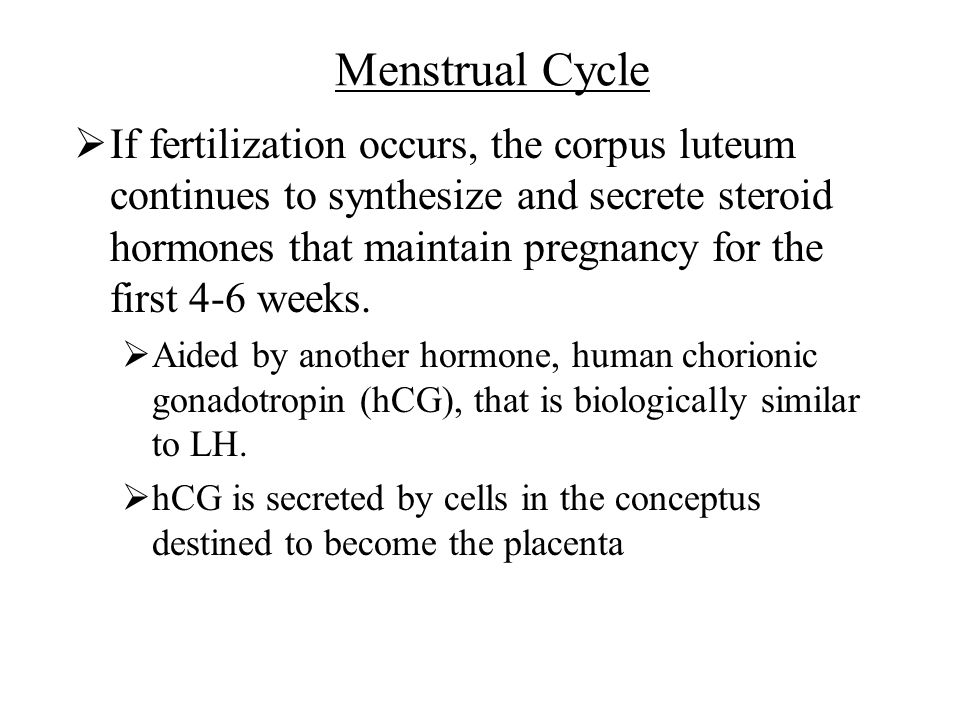 Chapter 12 Reproductive System - ppt download