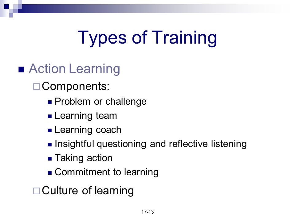 Types of Training Action Learning Components: Culture of learning