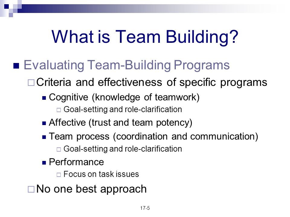 What is Team Building Evaluating Team-Building Programs