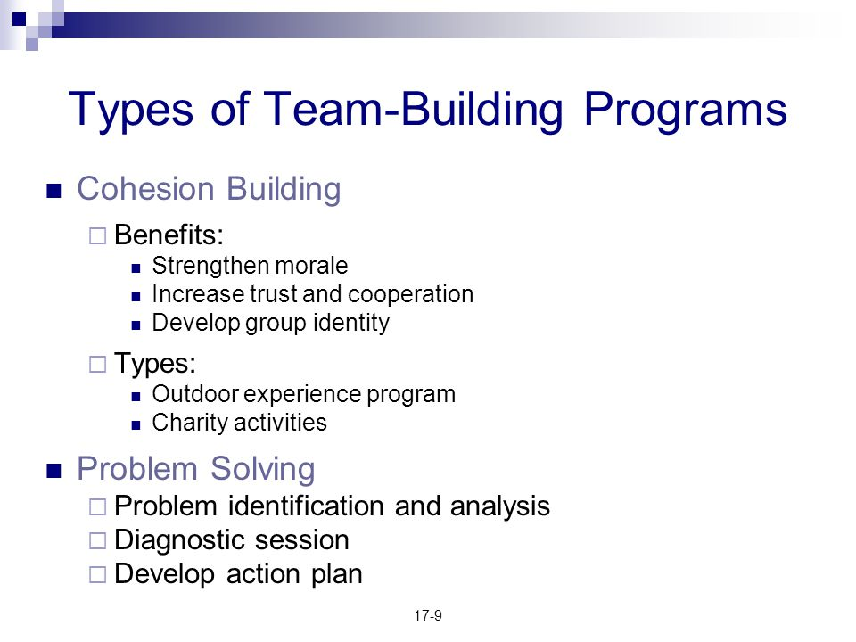 Types of Team-Building Programs