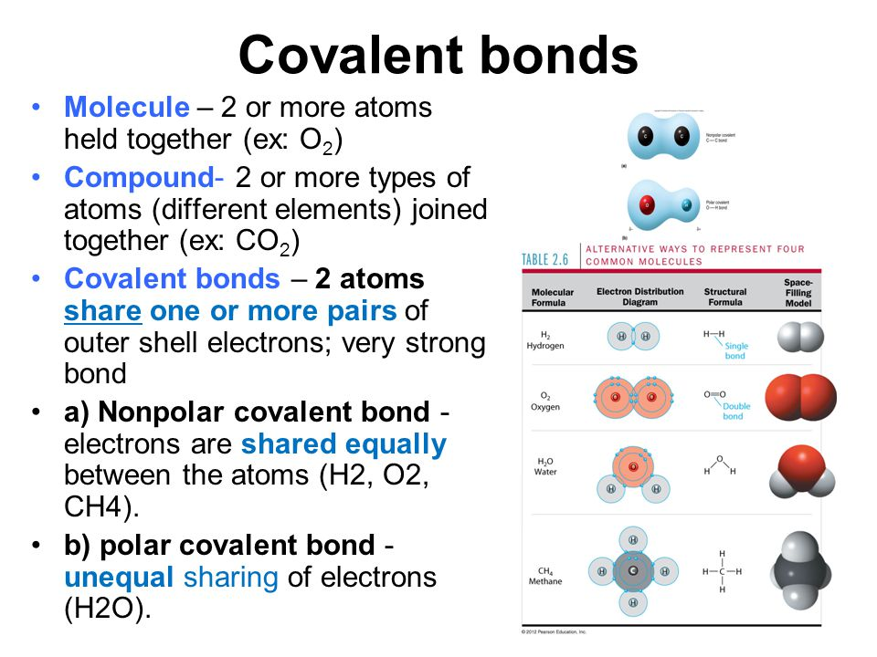 Covalent bonds Molecule – 2 or more atoms held together (ex: O2)