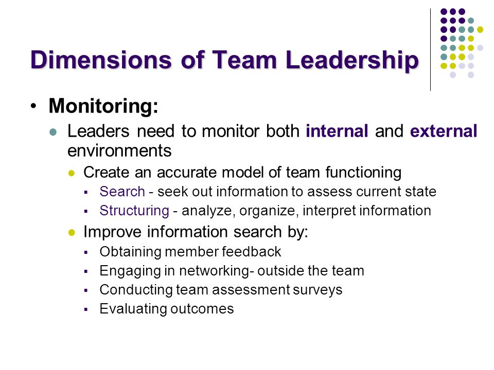 Dimensions of Team Leadership