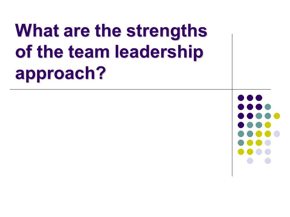 What are the strengths of the team leadership approach