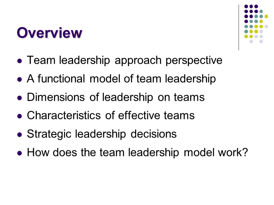 Overview Team leadership approach perspective