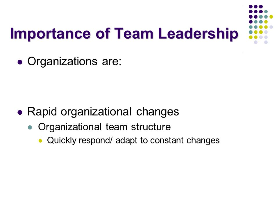 Importance of Team Leadership