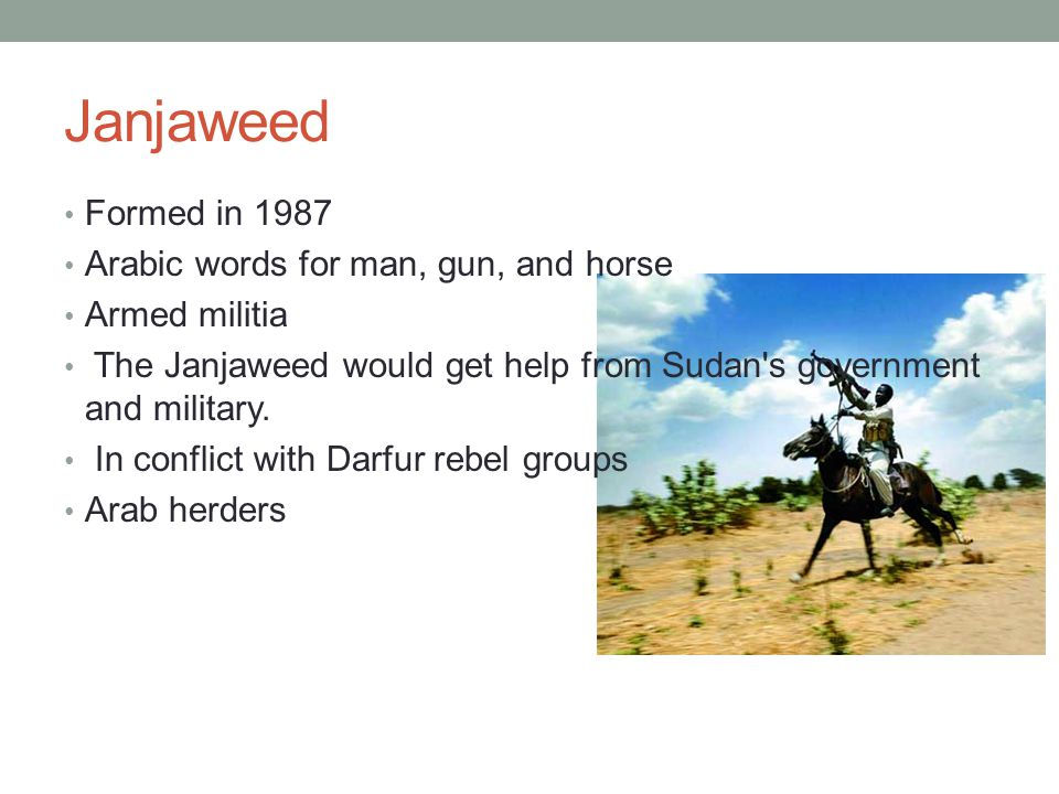 Janjaweed Formed in 1987 Arabic words for man, gun, and horse