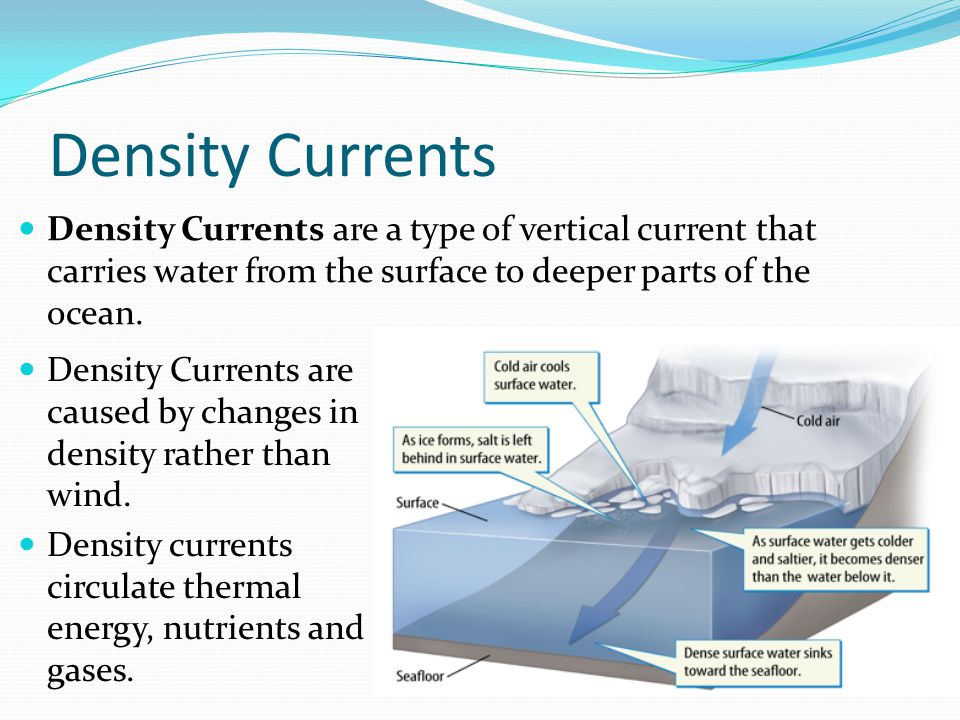 Density Currents Density Currents are a type of vertical current that carries water from the surface to deeper parts of the ocean.