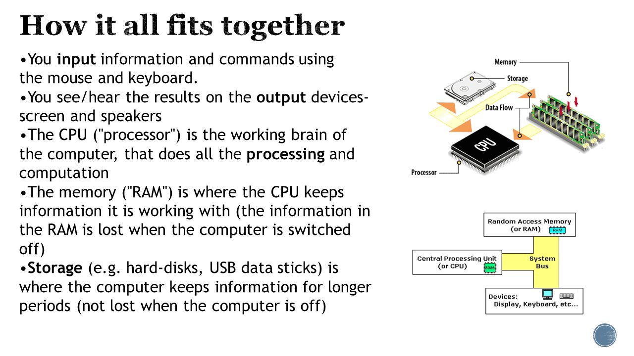 Cpu Describe The Purpose Of Ppt Video Online Download Diagram Computer Components Mouse Monitor Etc 4 How