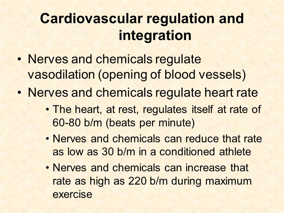 Cardiovascular regulation and integration