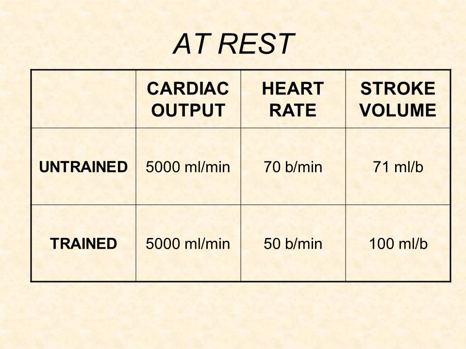 AT REST CARDIAC OUTPUT HEART RATE STROKE VOLUME UNTRAINED 5000 ml/min