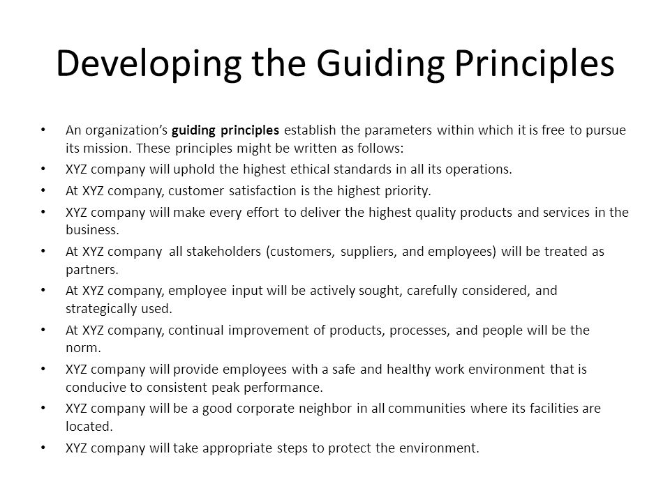 Developing the Guiding Principles
