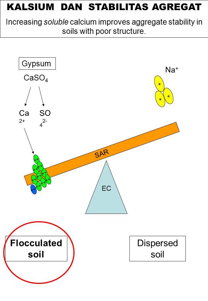 Struktur tanah dan agregasi soemarno maret 2012 ppt download kalsium dan stabilitas agregat ccuart Image collections