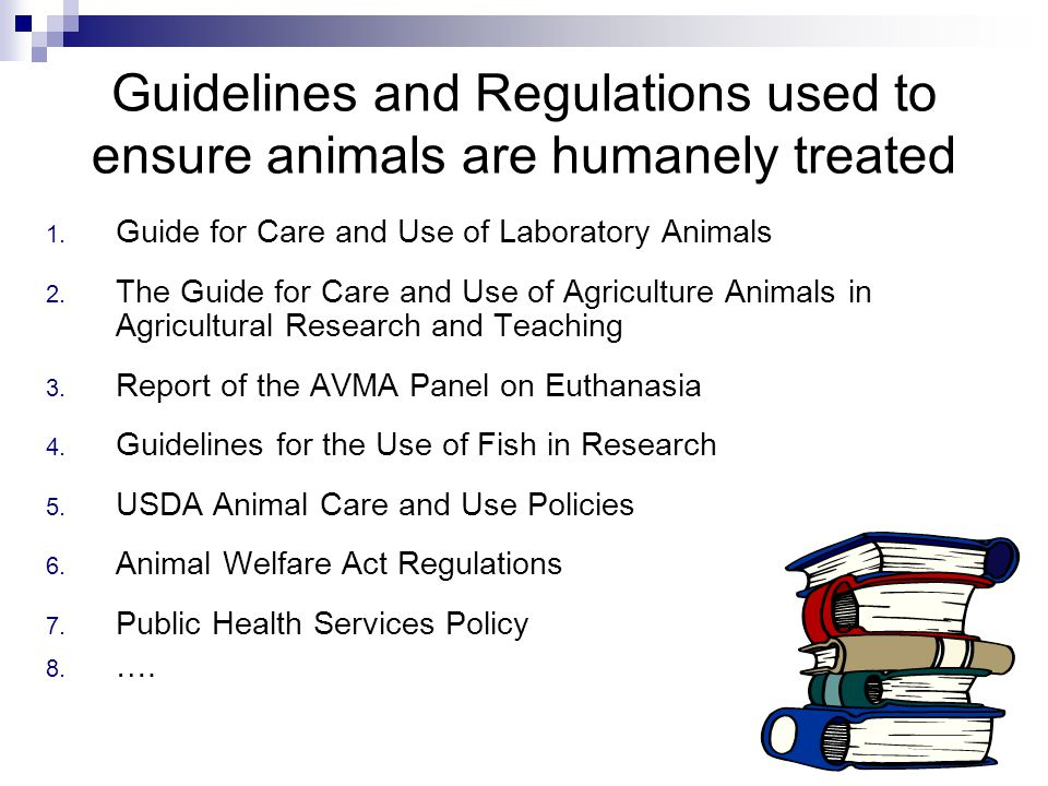 """ethical treatment of animals essay This """"definition"""" of animal testing might have derived from various organizations that do not support the idea of animal research studies as a whole and demand ethical treatment of animals through unjust terrifying acts of demonstrations and protests these are the organizations who believe animals have """"rights."""