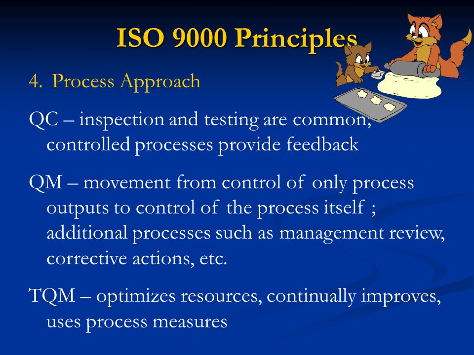 ISO 9000 Principles Process Approach