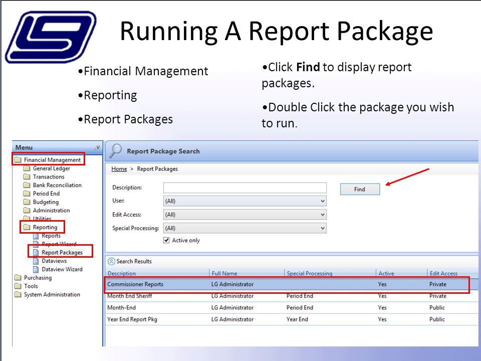 Running A Report Package