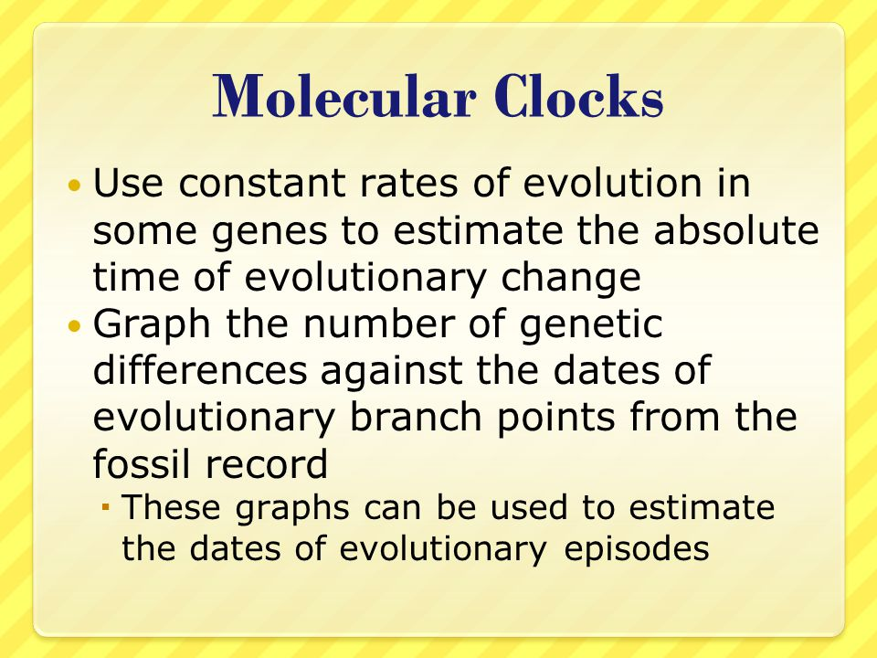 Molecular Clocks Use constant rates of evolution in some genes to estimate the absolute time of evolutionary change.