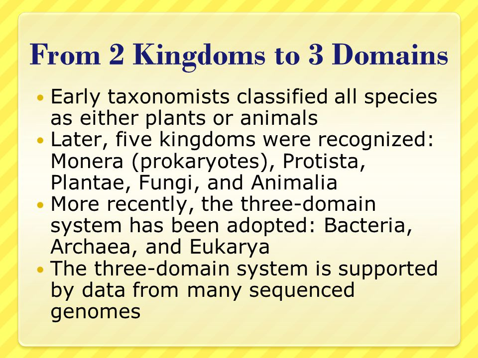 From 2 Kingdoms to 3 Domains