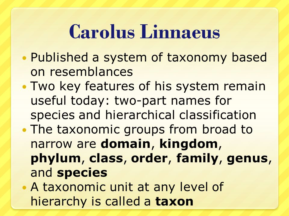 Carolus Linnaeus Published a system of taxonomy based on resemblances