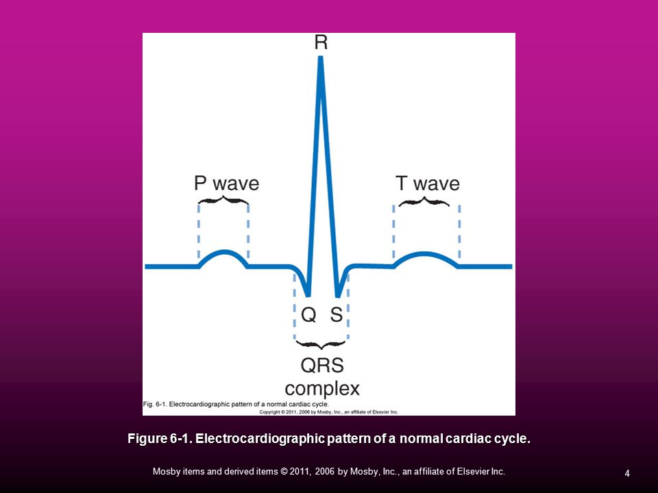 Figure 6-1. Electrocardiographic pattern of a normal cardiac cycle.