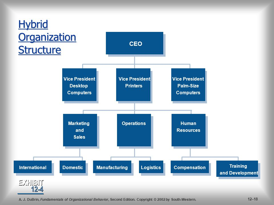 Organization structure and design ppt video online download hybrid organization structure publicscrutiny Images