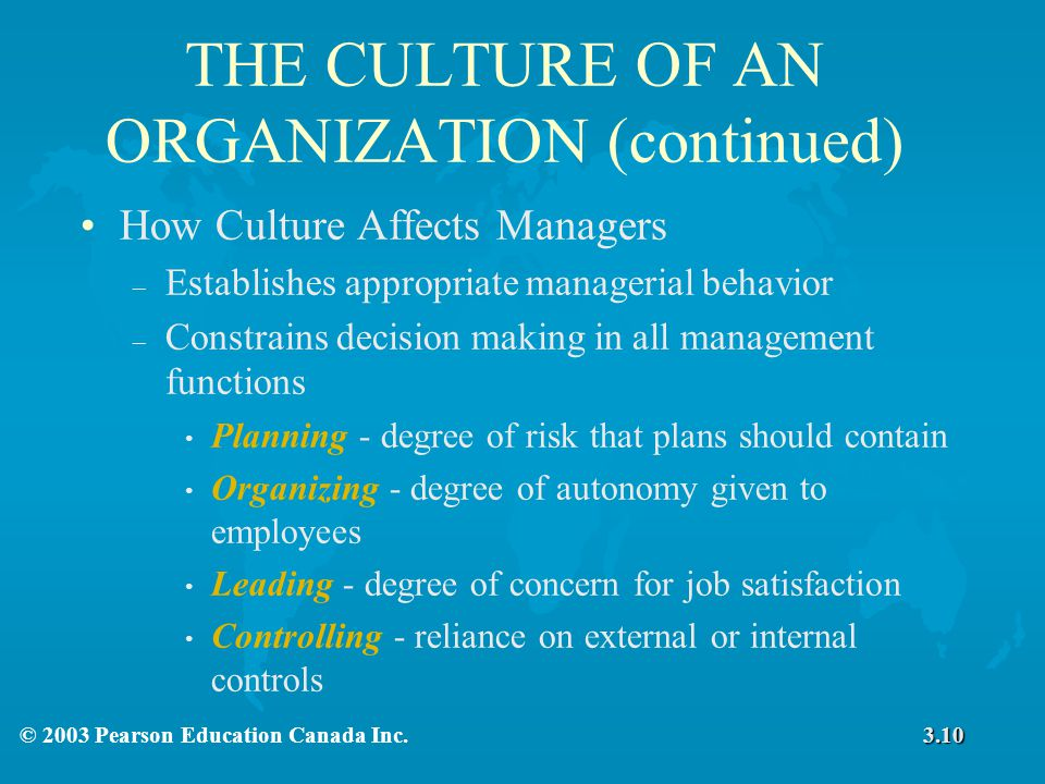 THE CULTURE OF AN ORGANIZATION (continued)