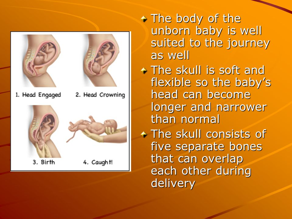 The body of the unborn baby is well suited to the journey as well