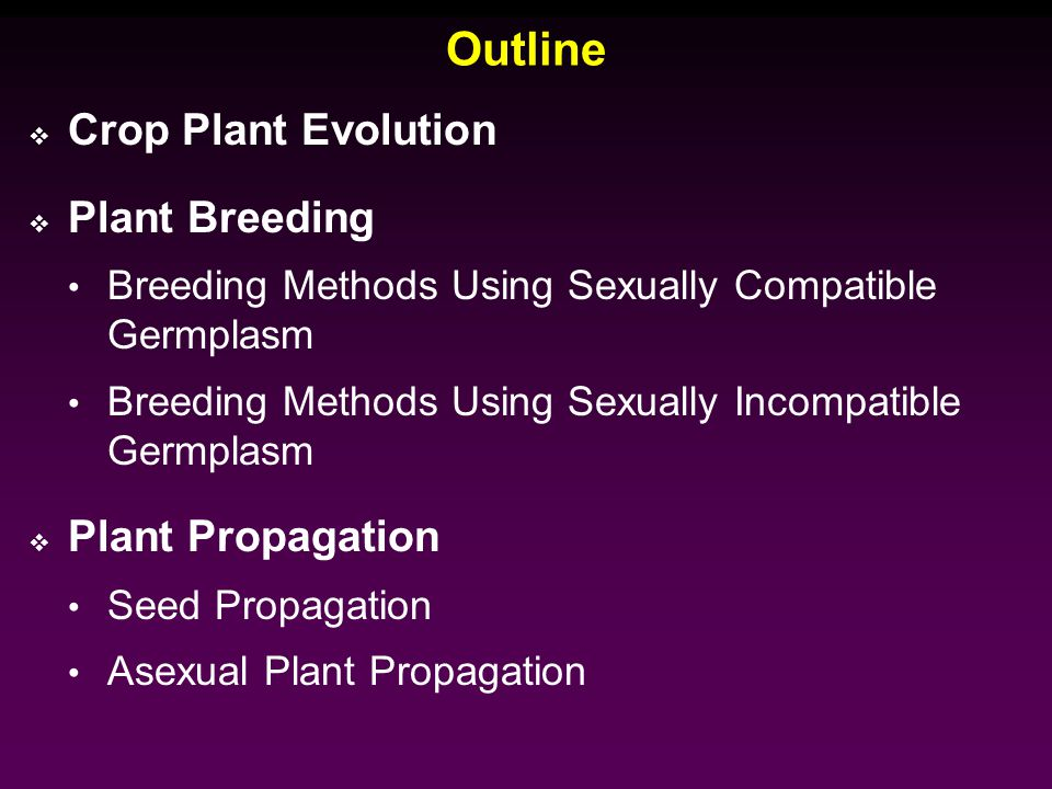 Breeding methods for asexually propagated crops