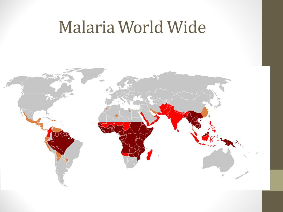 Malaria World Wide