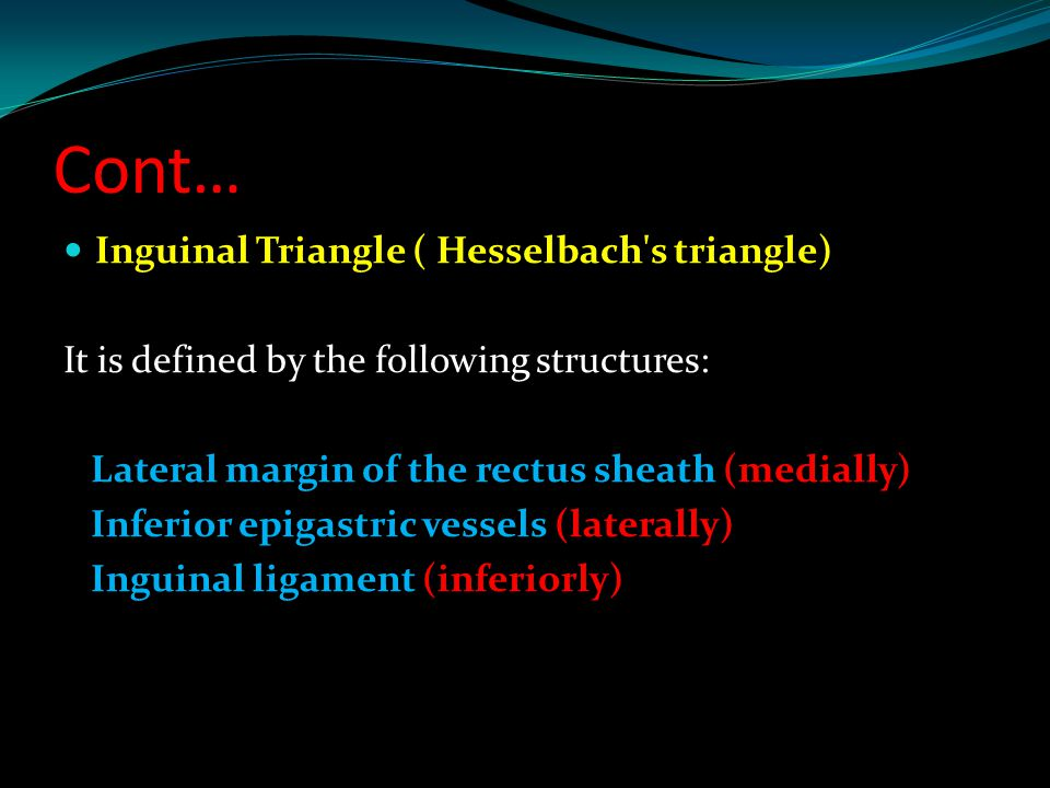 Cont… Inguinal Triangle ( Hesselbach s triangle)