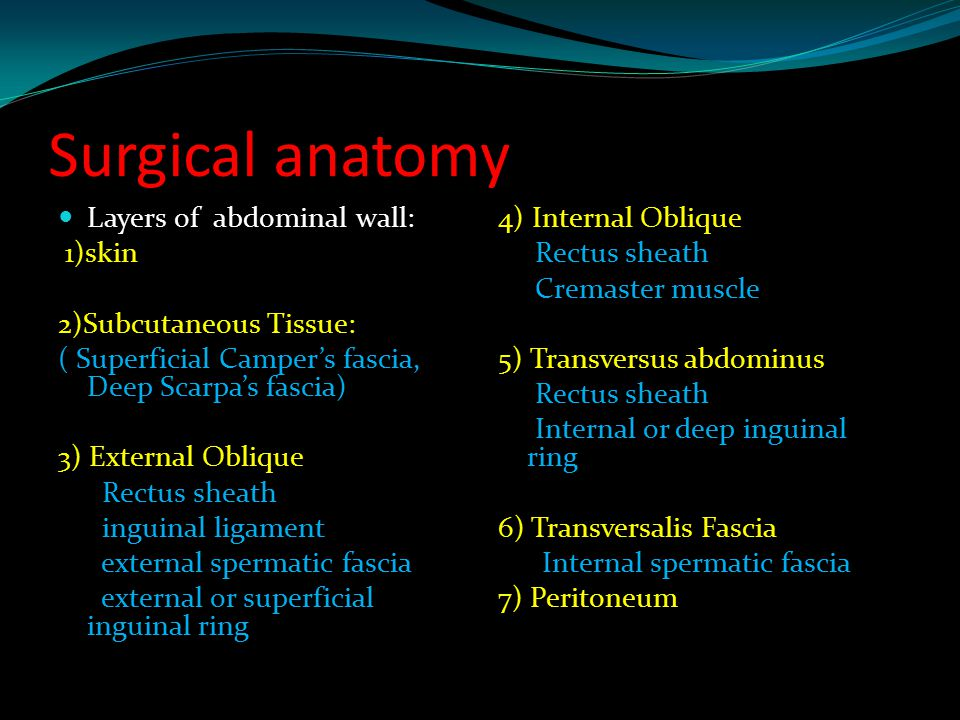 Surgical anatomy Layers of abdominal wall: 1)skin