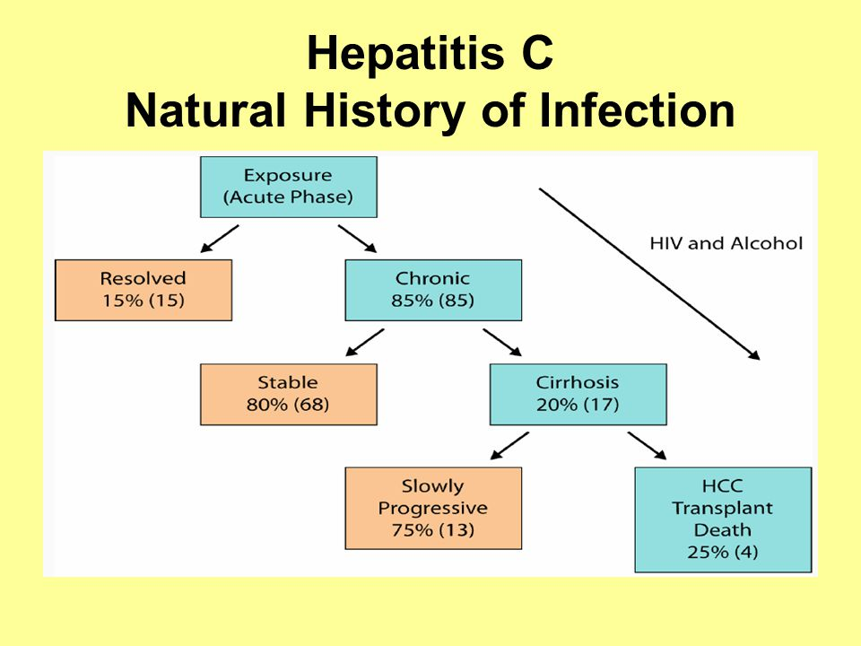 Hepatitis C Natural History of Infection