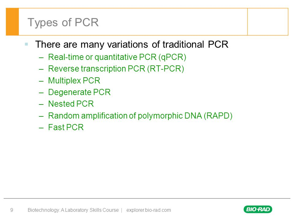 pcr and its types pdf