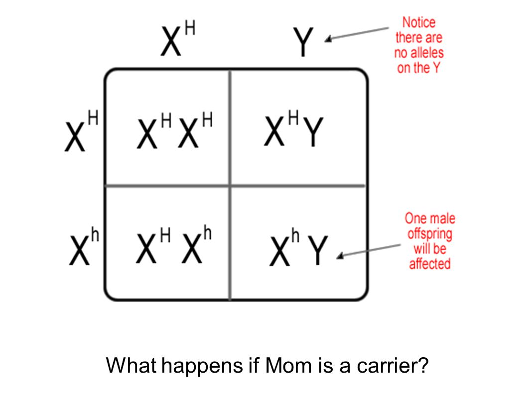 What happens if Mom is a carrier