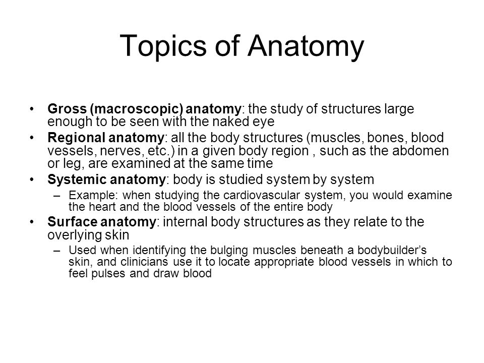 THE HUMAN BODY AN ORIENTATION - ppt video online download