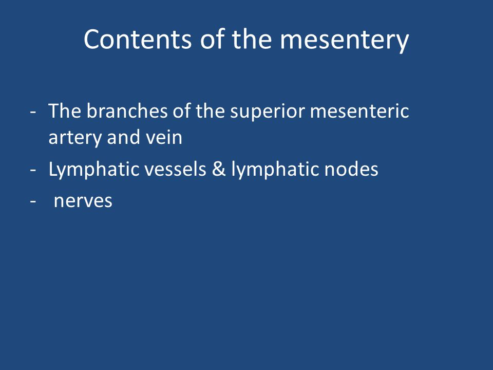 Contents of the mesentery