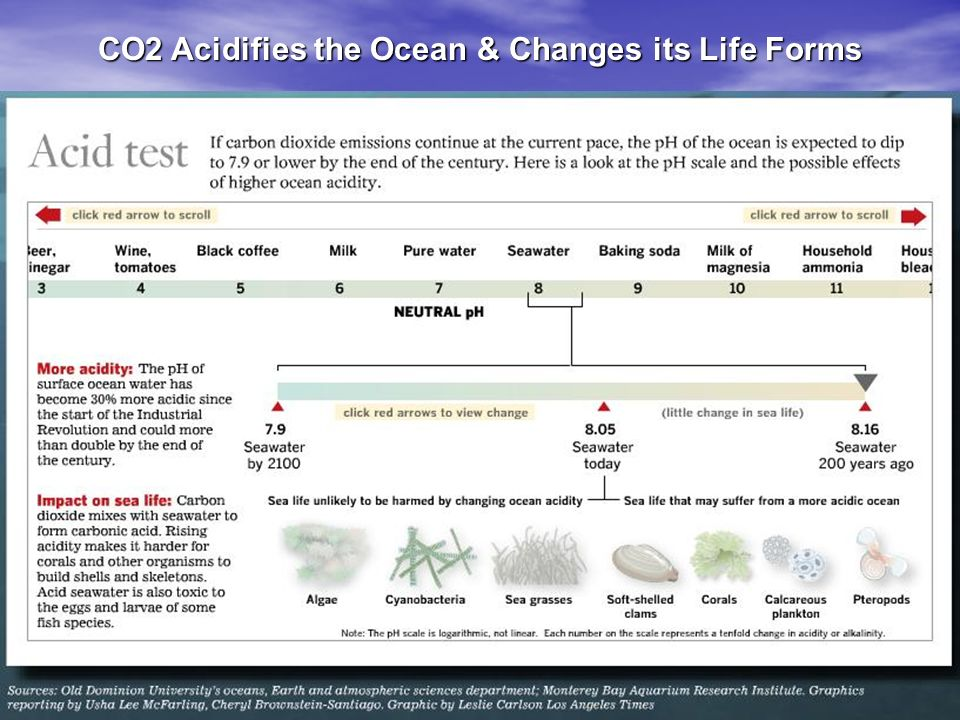CO2 Acidifies the Ocean & Changes its Life Forms
