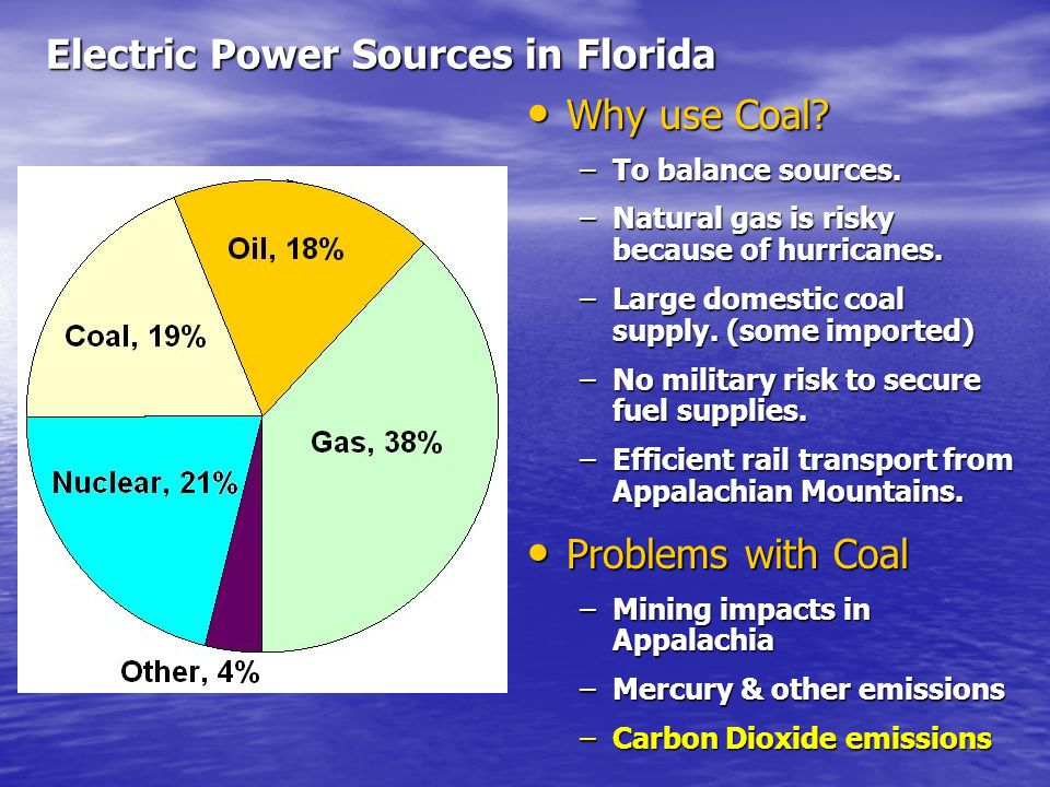 Electric Power Sources in Florida