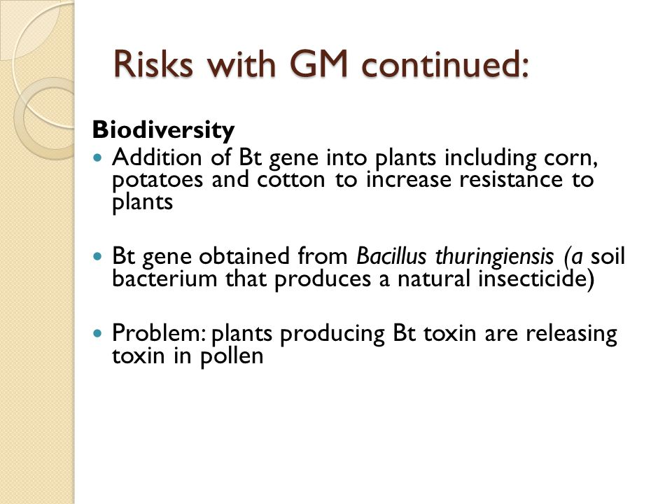 Risks with GM continued: