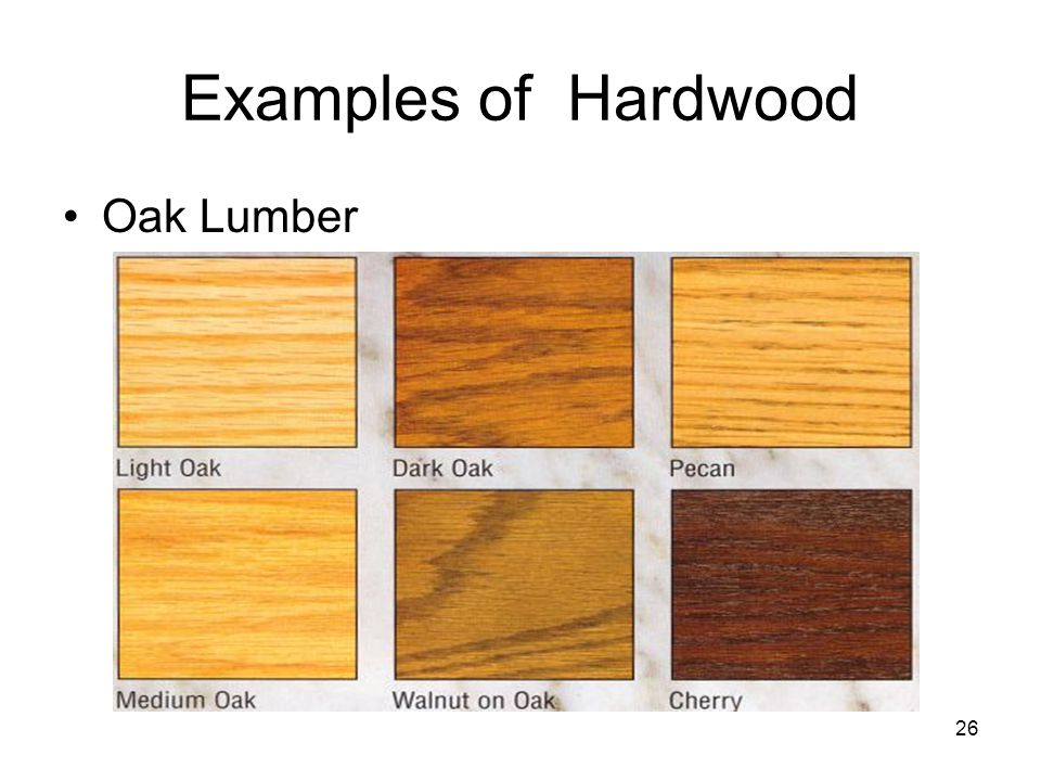 Examples of hard and soft woods.