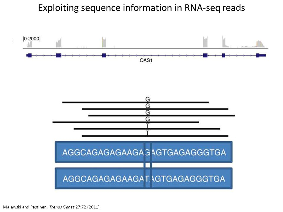 Exploiting sequence information in RNA-seq reads