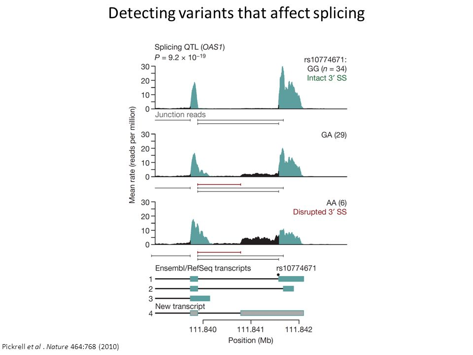 Detecting variants that affect splicing