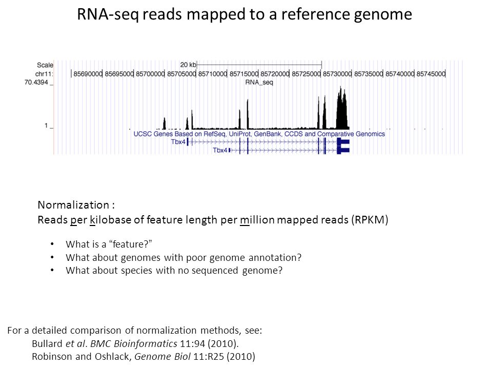 RNA-seq reads mapped to a reference genome
