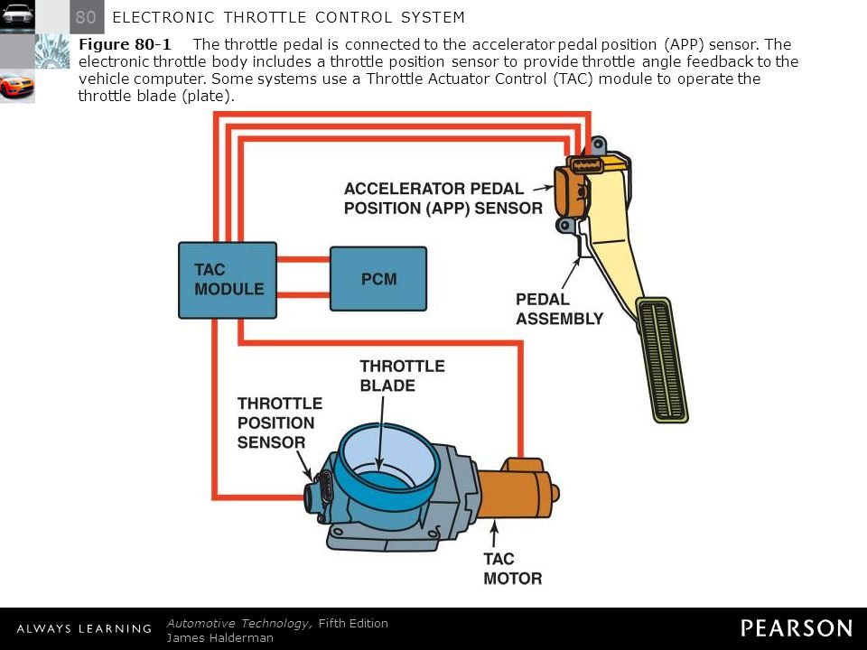 throttle actuator control (tac) module throttle actuator position performance