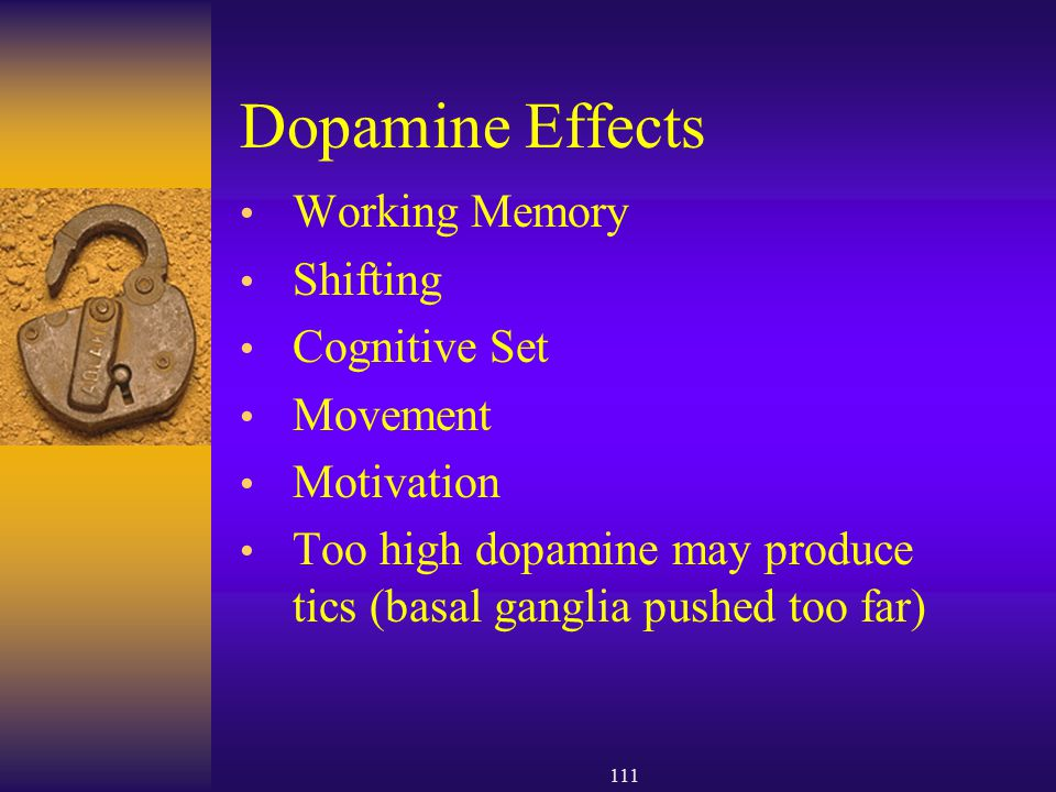 Dopamine Effects Working Memory Shifting Cognitive Set Movement