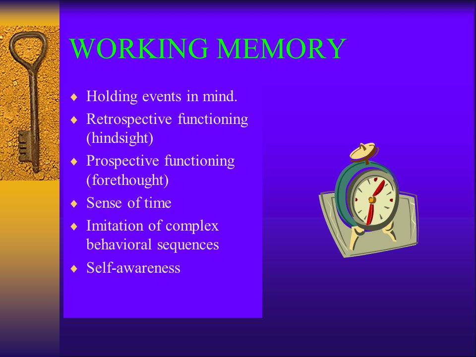 WORKING MEMORY Holding events in mind.