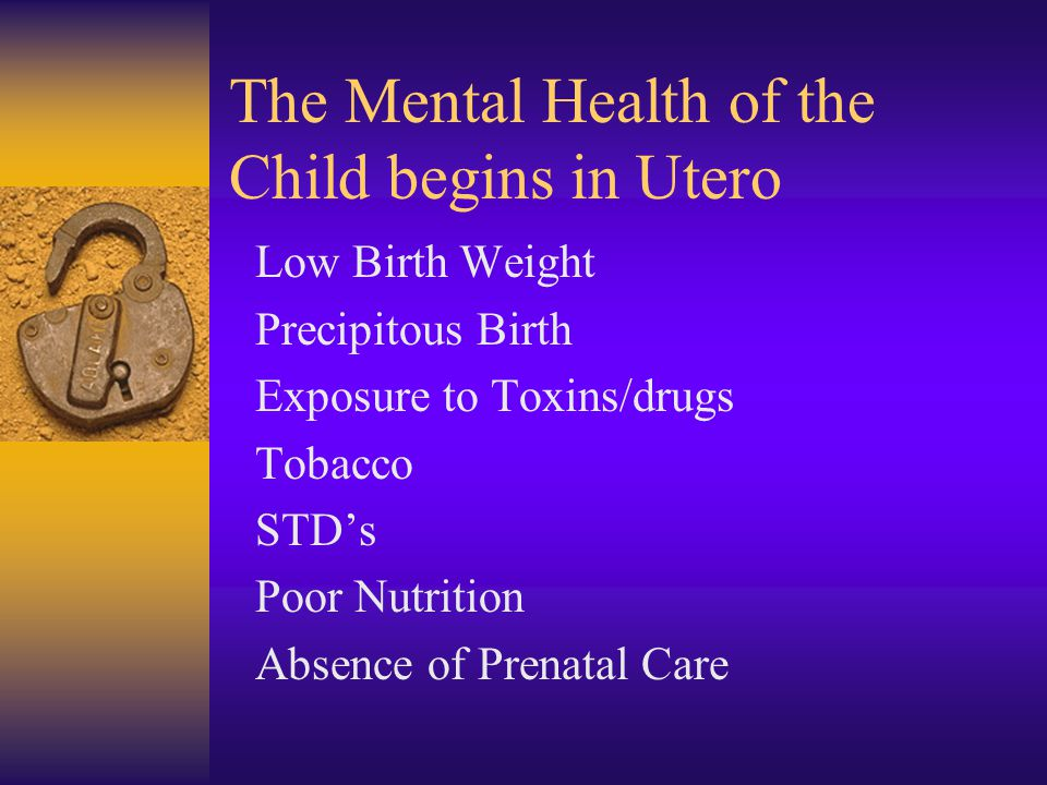 The Mental Health of the Child begins in Utero