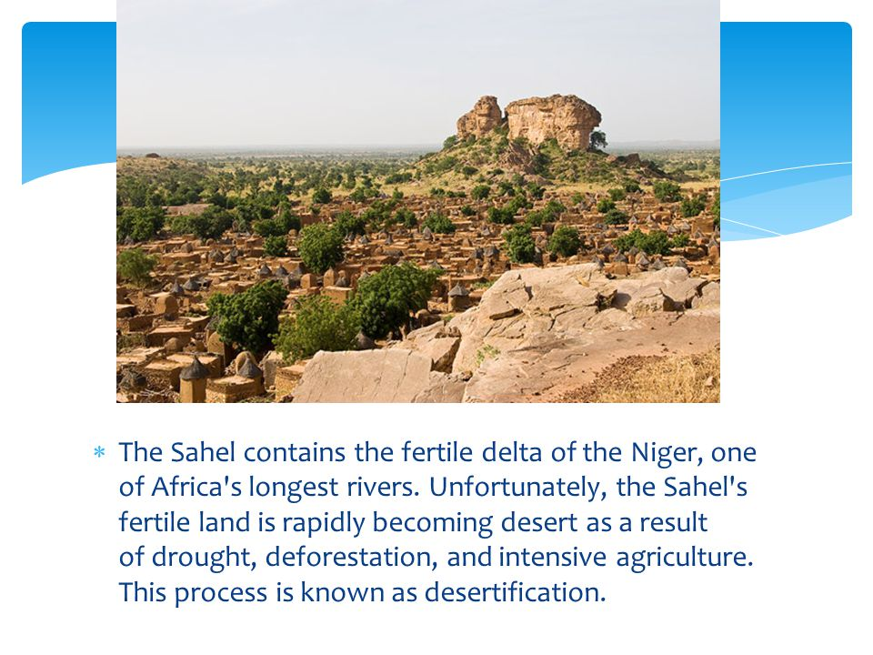 The Sahel contains the fertile delta of the Niger, one of Africa s longest rivers.