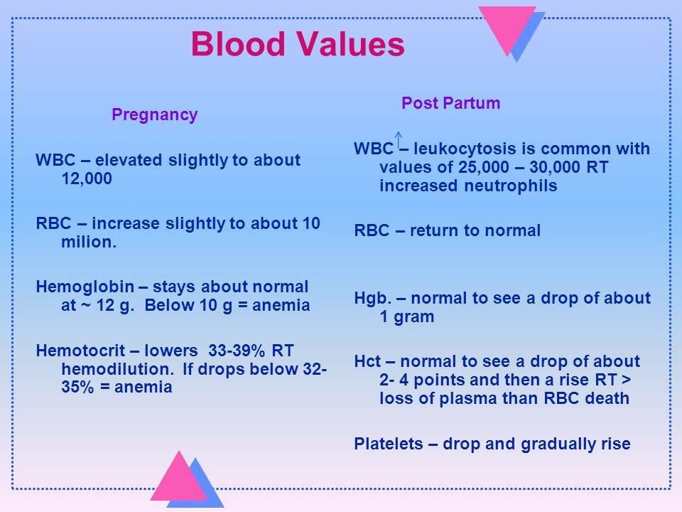 Normal Postpartum Chapter ppt video online download