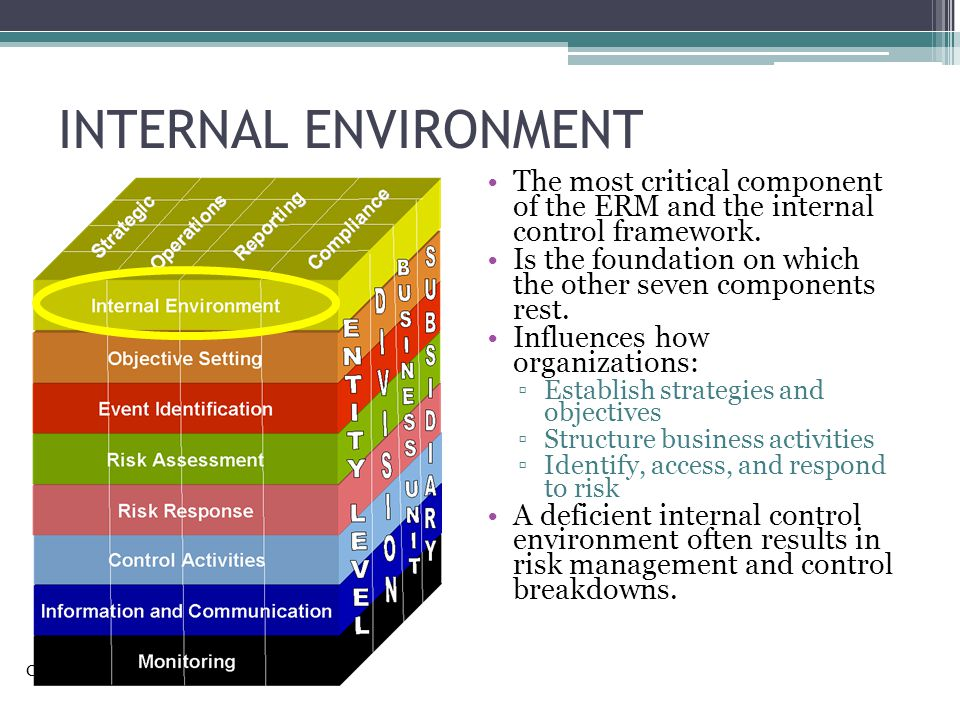 INTERNAL ENVIRONMENT The most critical component of the ERM and the internal control framework.