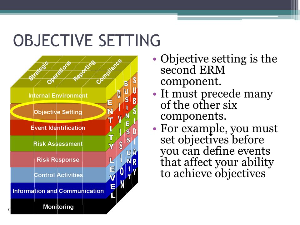 OBJECTIVE SETTING Objective setting is the second ERM component.